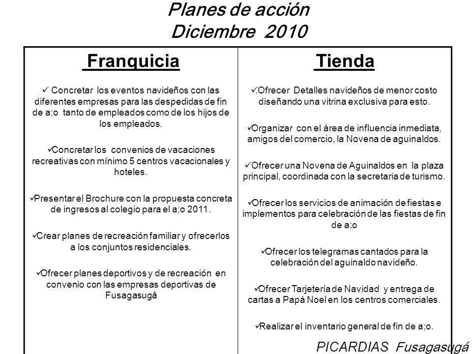 Planes de acción Diciembre 2010