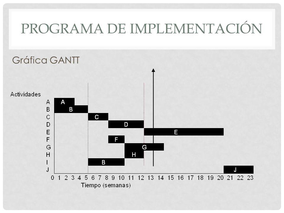 Programa de implementación