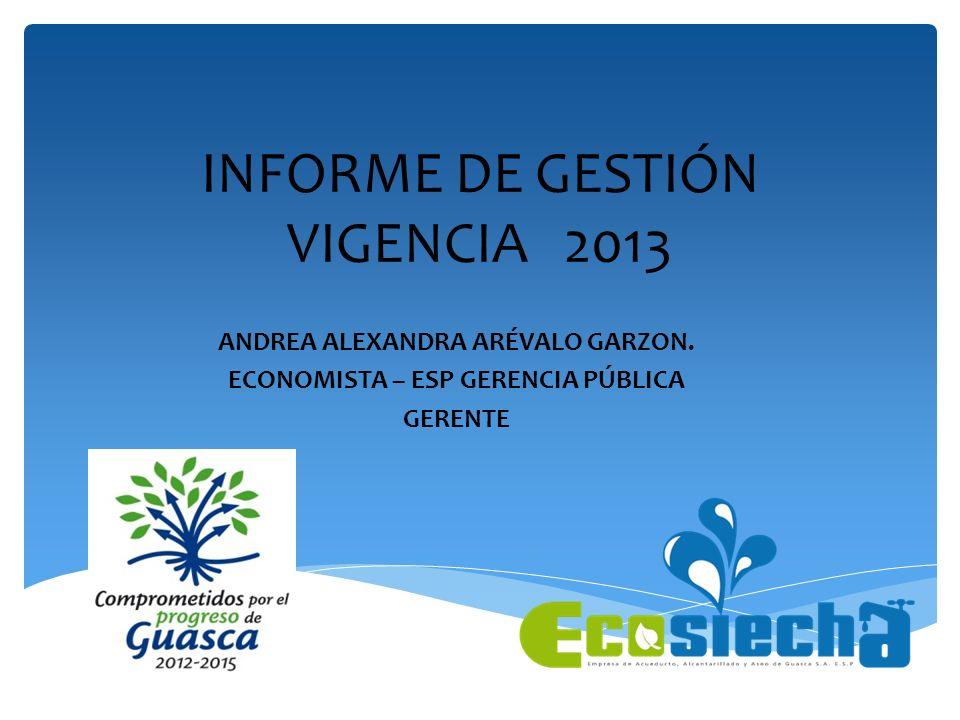 INFORME DE GESTIÓN VIGENCIA 2013