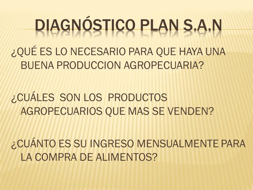DiagnÓstico plan s.a.n