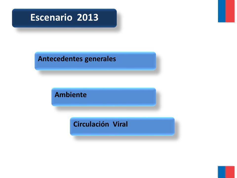 Escenario 2013 Antecedentes generales Ambiente Circulación Viral