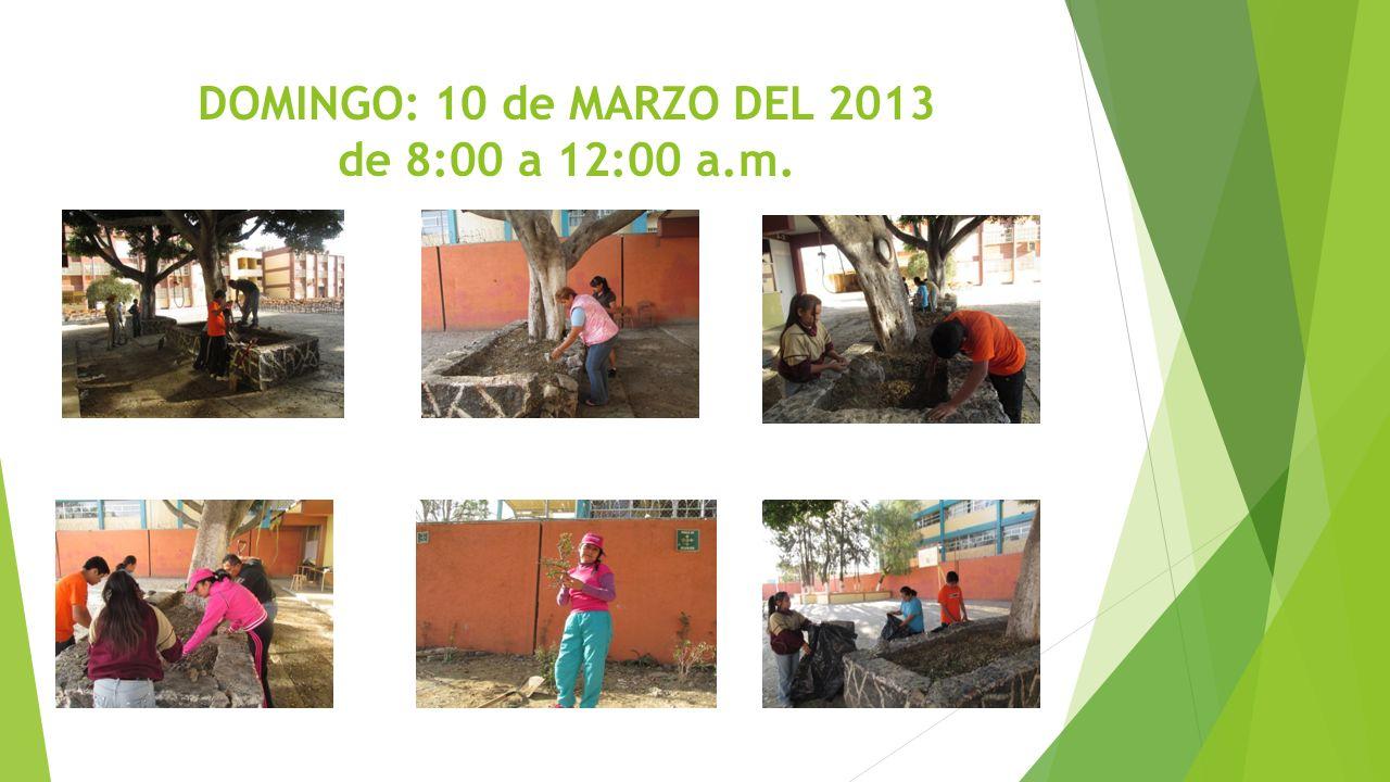 DOMINGO: 10 de MARZO DEL 2013 de 8:00 a 12:00 a.m.