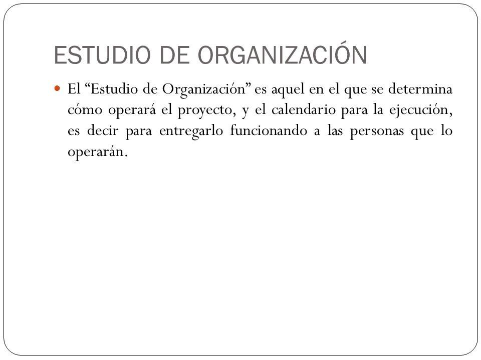 ESTUDIO DE ORGANIZACIÓN