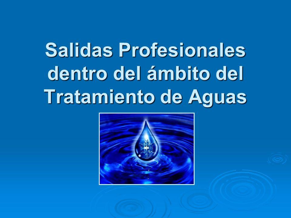 Salidas Profesionales dentro del ámbito del Tratamiento de Aguas