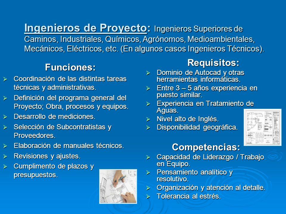 Ingenieros de Proyecto: Ingenieros Superiores de Caminos, Industriales, Químicos, Agrónomos, Medioambientales, Mecánicos, Eléctricos, etc. (En algunos casos Ingenieros Técnicos).