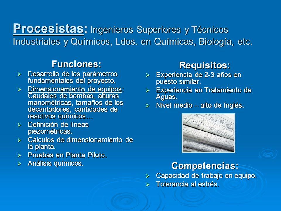 Procesistas: Ingenieros Superiores y Técnicos Industriales y Químicos, Ldos. en Químicas, Biología, etc.