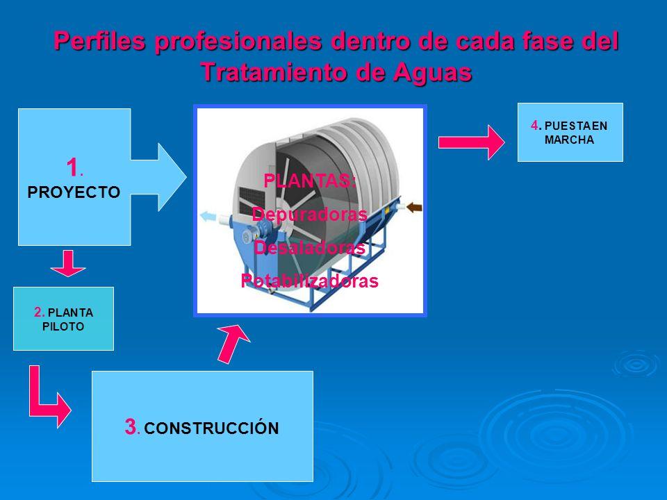 Perfiles profesionales dentro de cada fase del Tratamiento de Aguas
