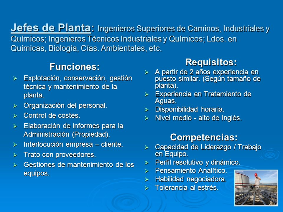Jefes de Planta: Ingenieros Superiores de Caminos, Industriales y Químicos; Ingenieros Técnicos Industriales y Químicos; Ldos. en Químicas, Biología, Cías. Ambientales, etc.