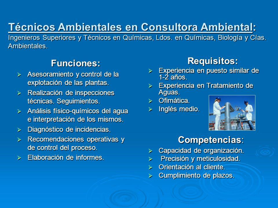 Técnicos Ambientales en Consultora Ambiental: Ingenieros Superiores y Técnicos en Químicas, Ldos. en Químicas, Biología y Cías. Ambientales.