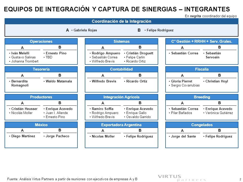 EQUIPOS DE INTEGRACIÓN Y CAPTURA DE SINERGIAS – OBJETIVOS