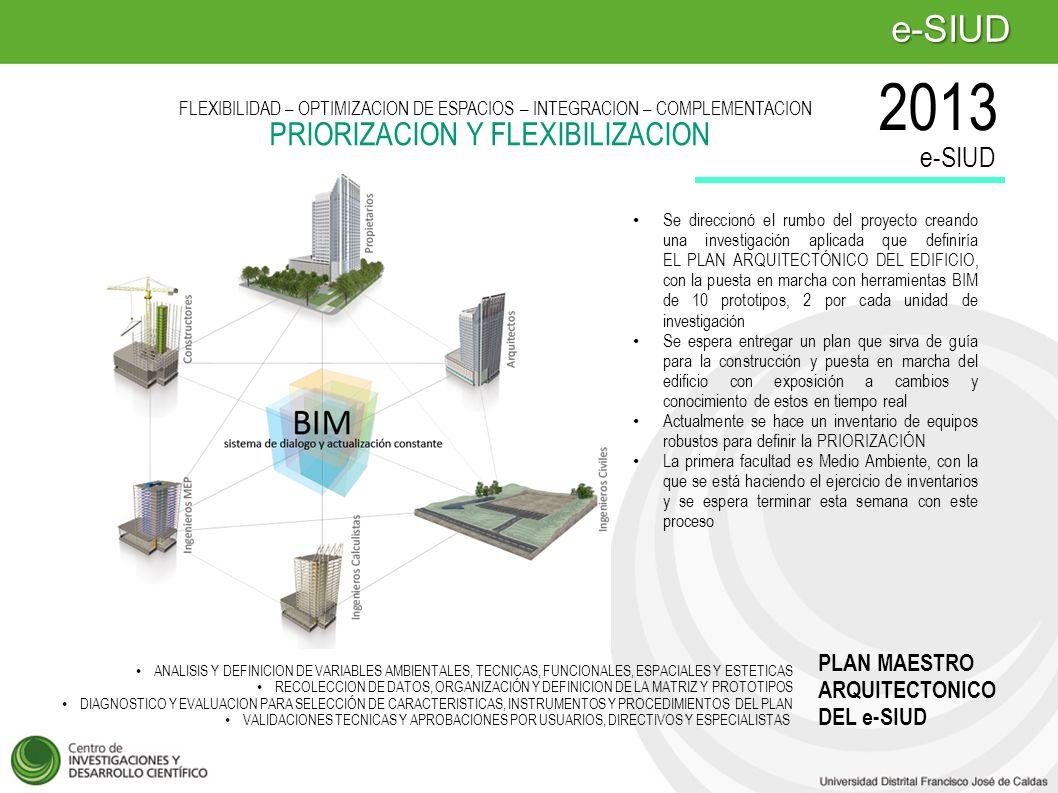 2013 e-SIUD PRIORIZACION Y FLEXIBILIZACION e-SIUD