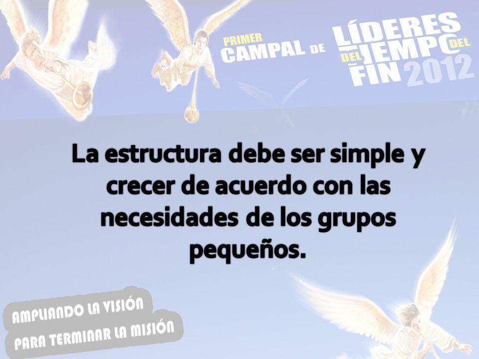 La estructura debe ser simple y crecer de acuerdo con las necesidades de los grupos pequeños.