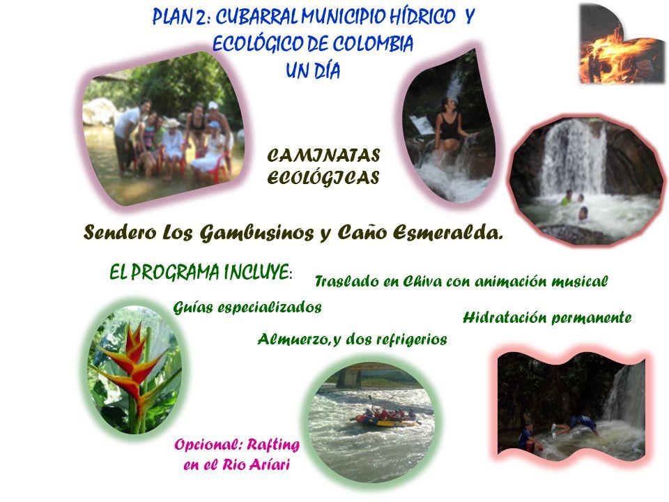 PLAN 2: CUBARRAL MUNICIPIO HÍDRICO Y ECOLÓGICO DE COLOMBIA