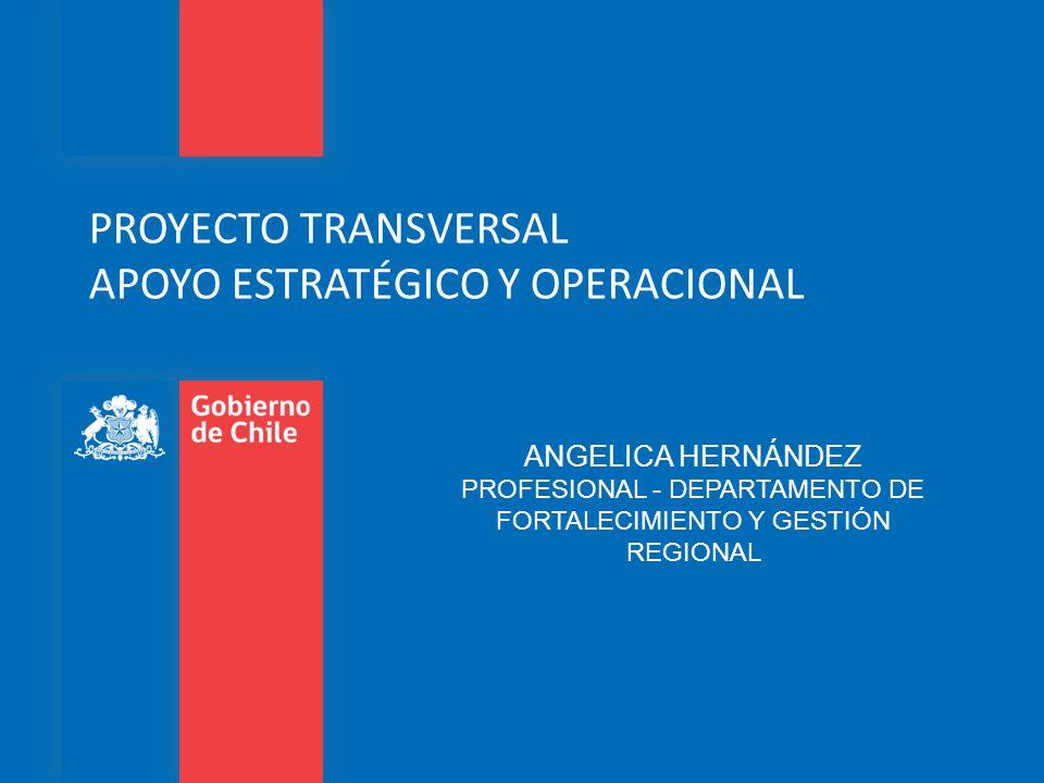 PROYECTO TRANSVERSAL APOYO ESTRATÉGICO Y OPERACIONAL