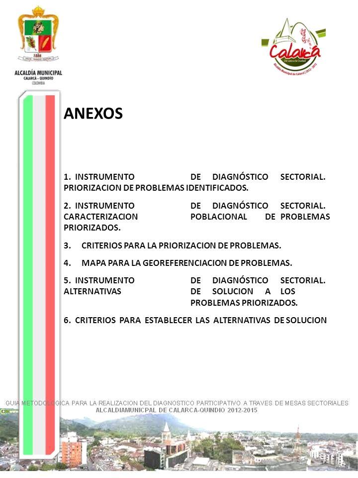 ANEXOS 1. INSTRUMENTO DE DIAGNÓSTICO SECTORIAL.