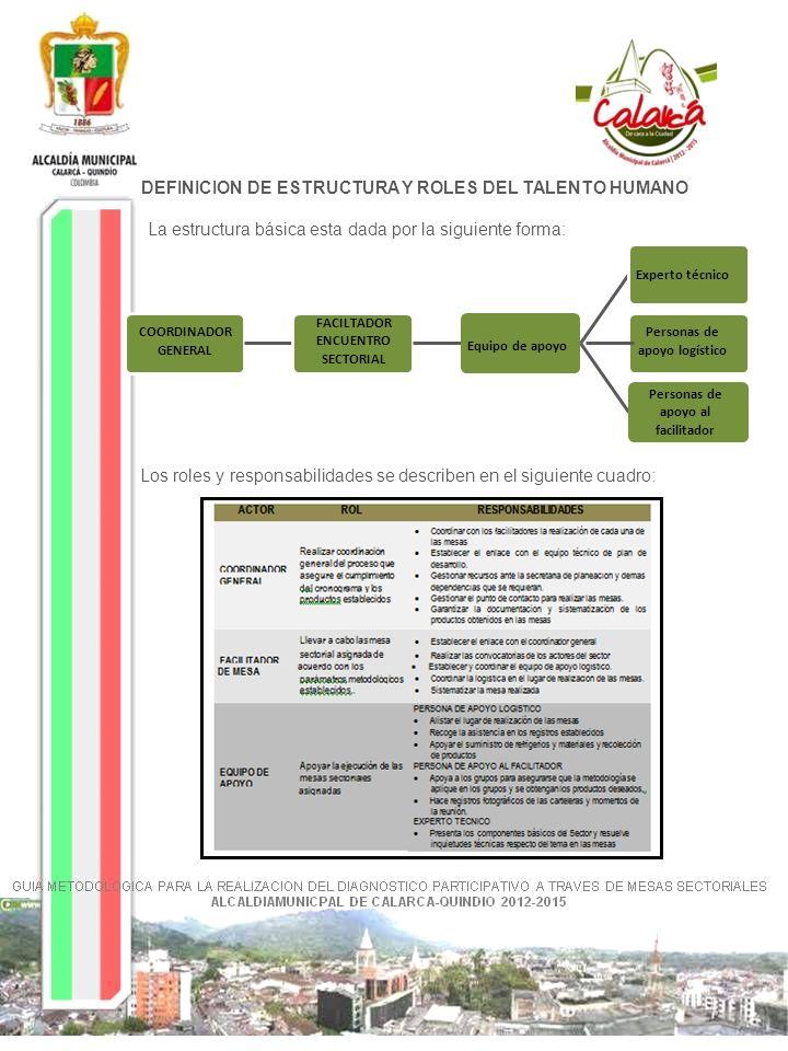 DEFINICION DE ESTRUCTURA Y ROLES DEL TALENTO HUMANO