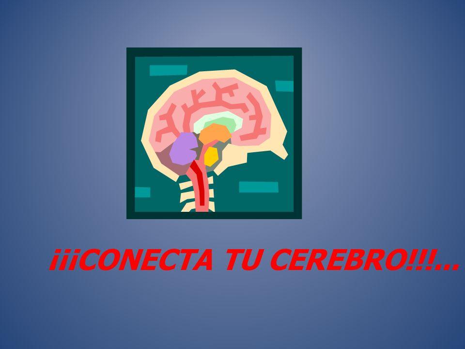 ¡¡¡CONECTA TU CEREBRO!!!...