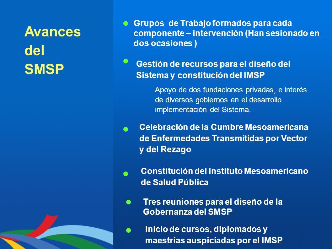 Avances del SMSP Grupos de Trabajo formados para cada