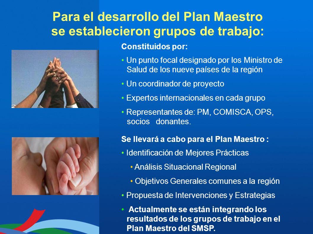 Para el desarrollo del Plan Maestro