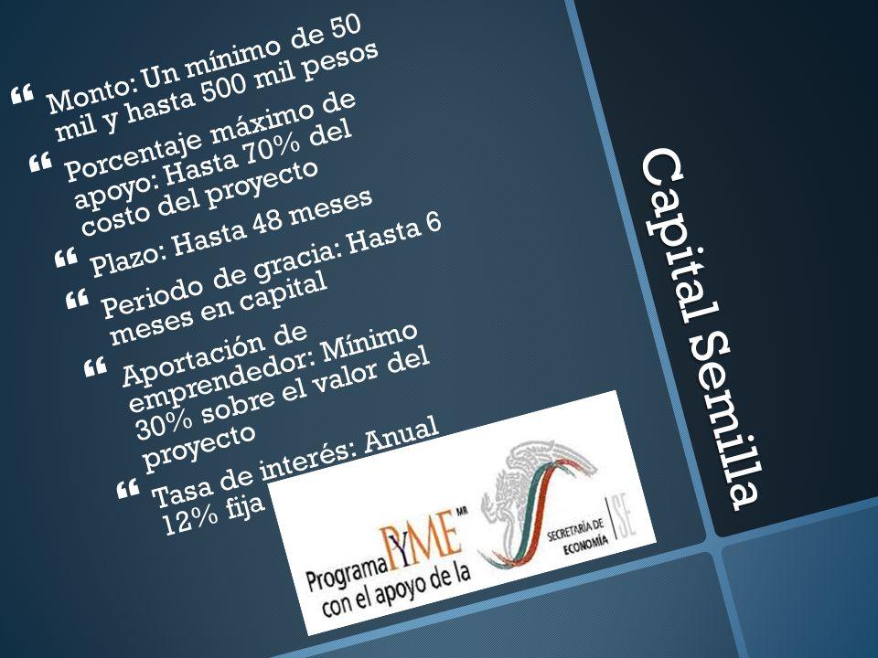 Capital Semilla Monto: Un mínimo de 50 mil y hasta 500 mil pesos