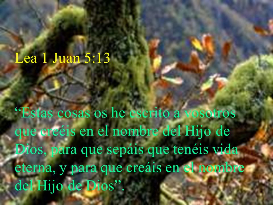 Lea 1 Juan 5:13