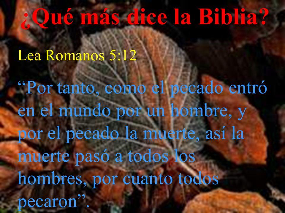 ¿Qué más dice la Biblia Lea Romanos 5:12.