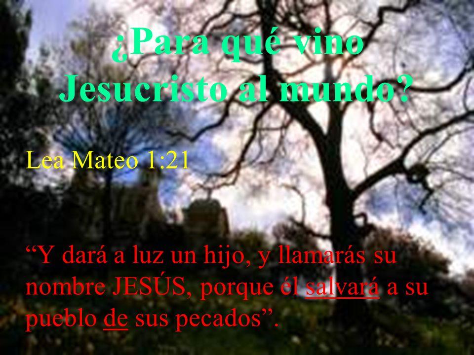 ¿Para qué vino Jesucristo al mundo