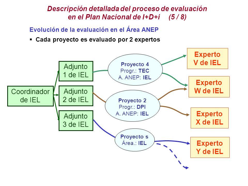 Descripción detallada del proceso de evaluación en el Plan Nacional de I+D+i (5 / 8)