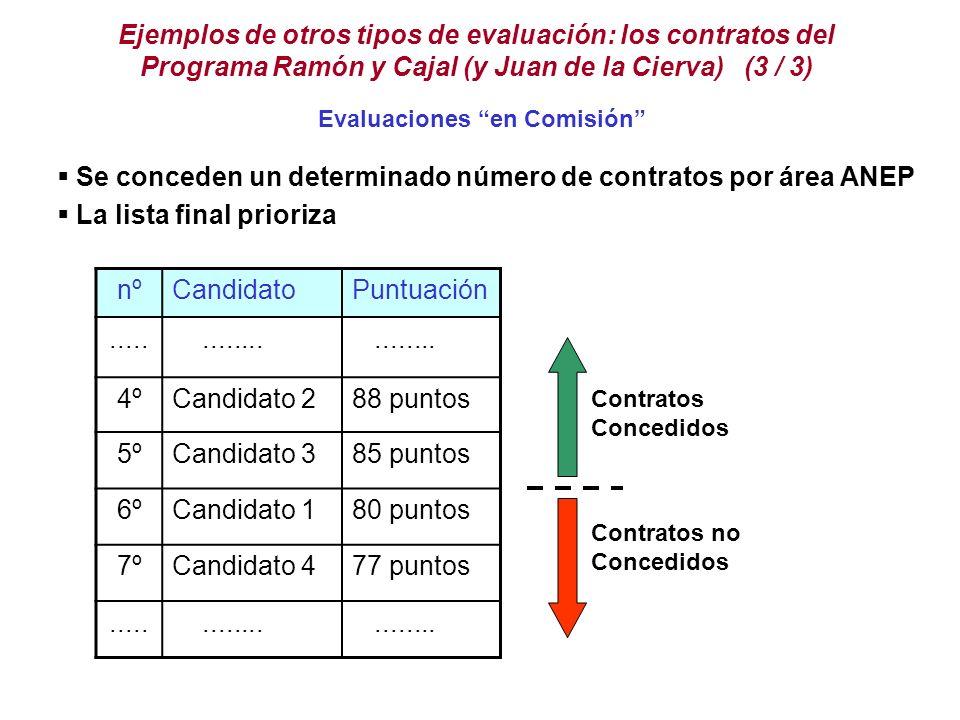 Se conceden un determinado número de contratos por área ANEP