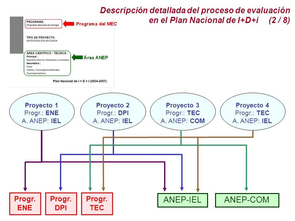Descripción detallada del proceso de evaluación en el Plan Nacional de I+D+i (2 / 8)