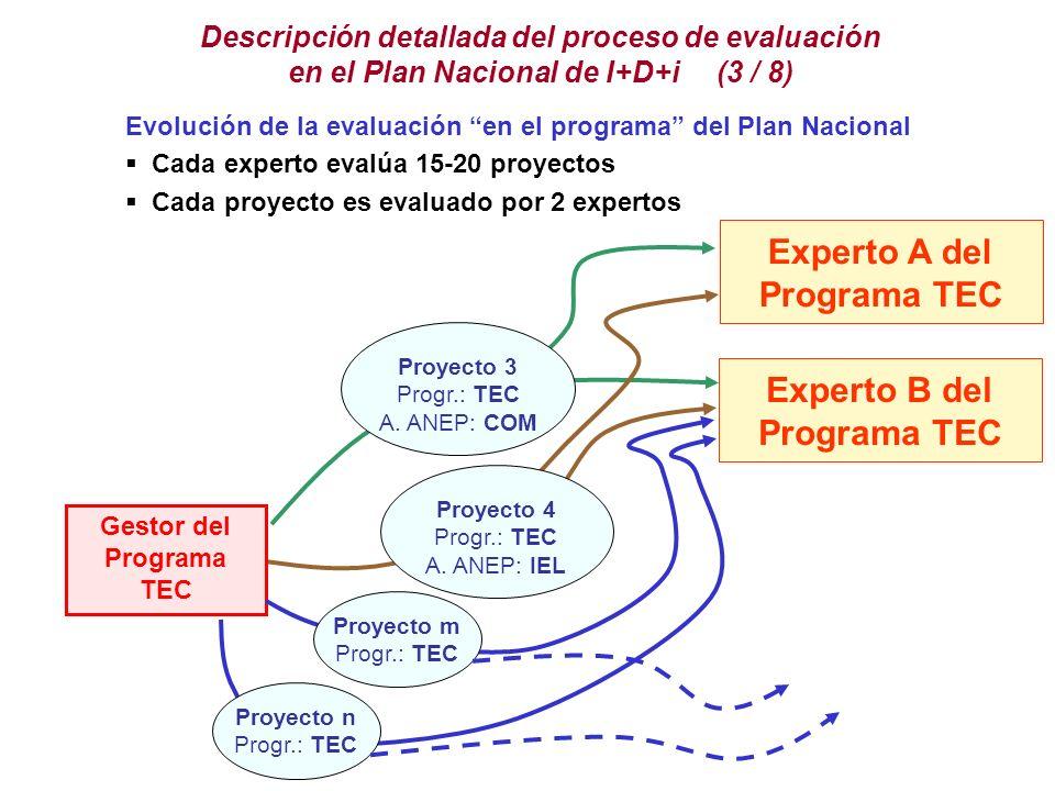 Experto A del Programa TEC Experto B del Programa TEC