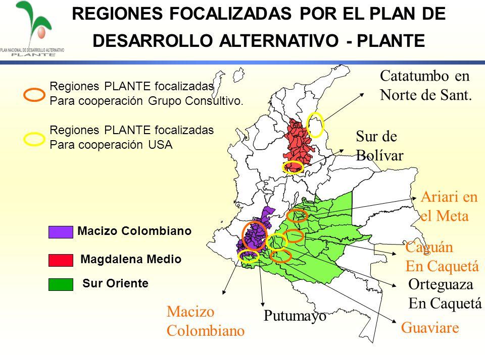 REGIONES FOCALIZADAS POR EL PLAN DE DESARROLLO ALTERNATIVO - PLANTE
