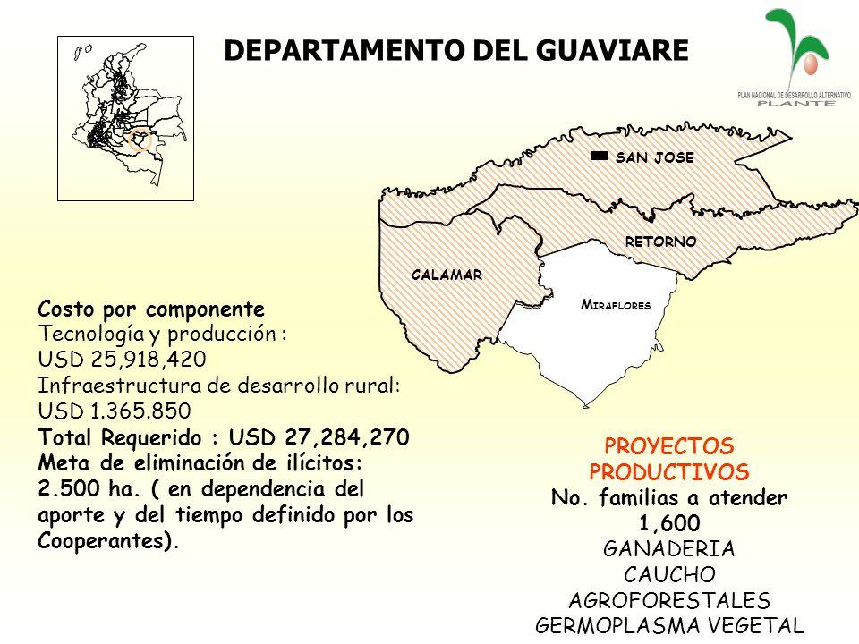 DEPARTAMENTO DEL GUAVIARE