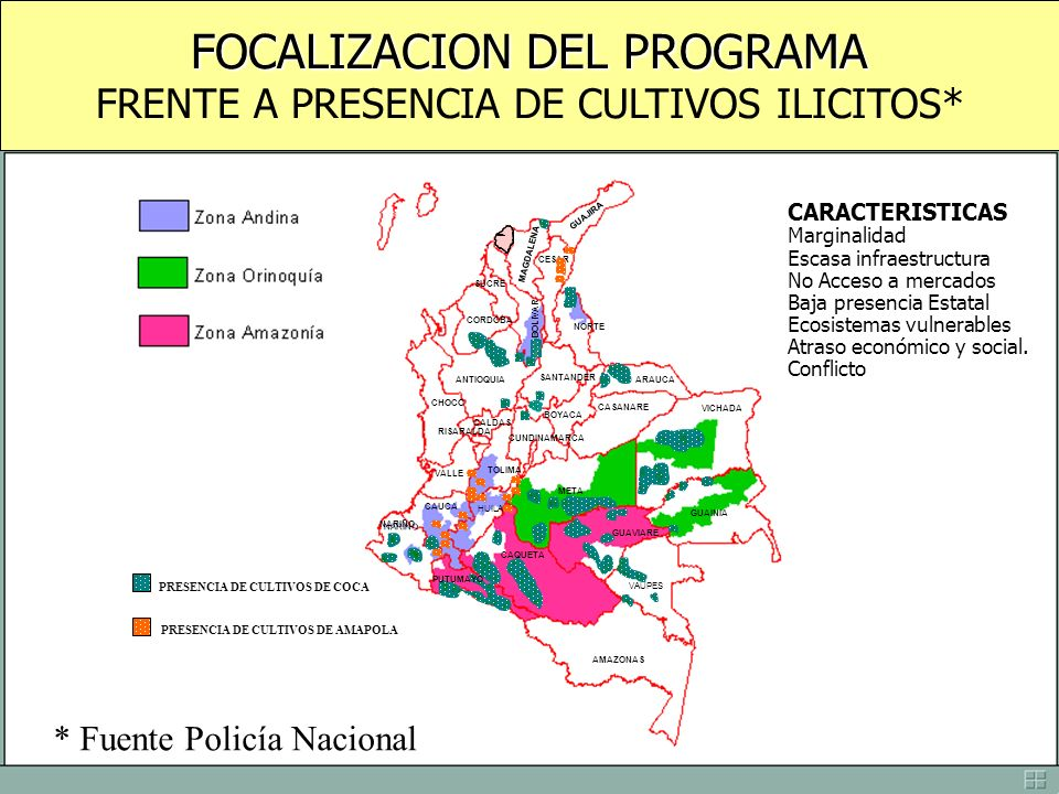 FOCALIZACION DEL PROGRAMA