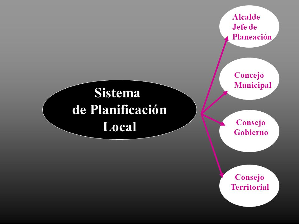 Sistema de Planificación Local