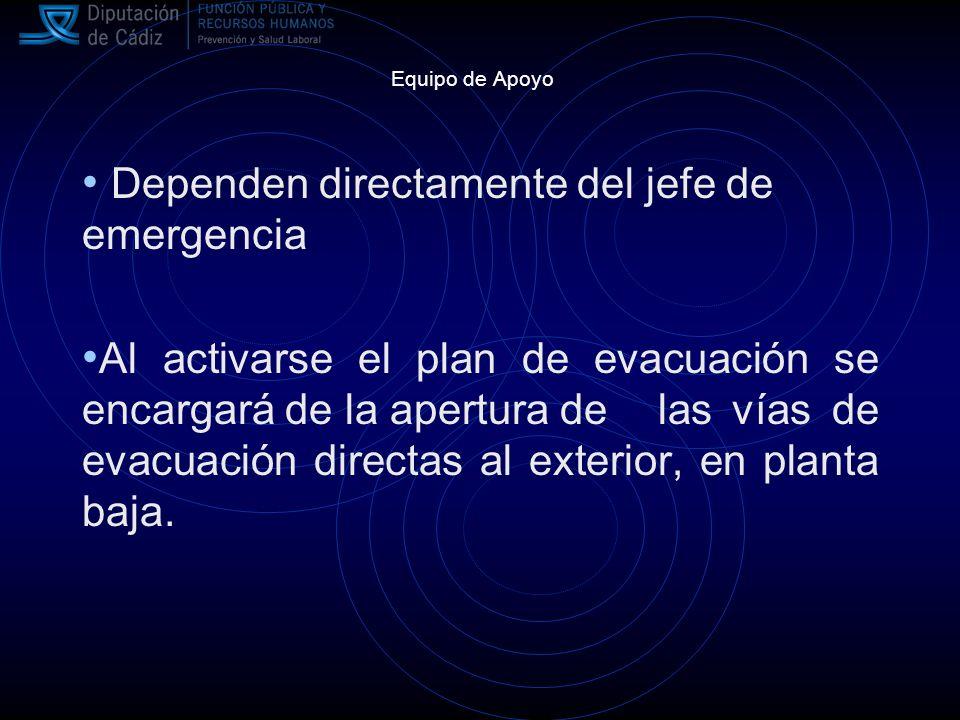 Dependen directamente del jefe de emergencia