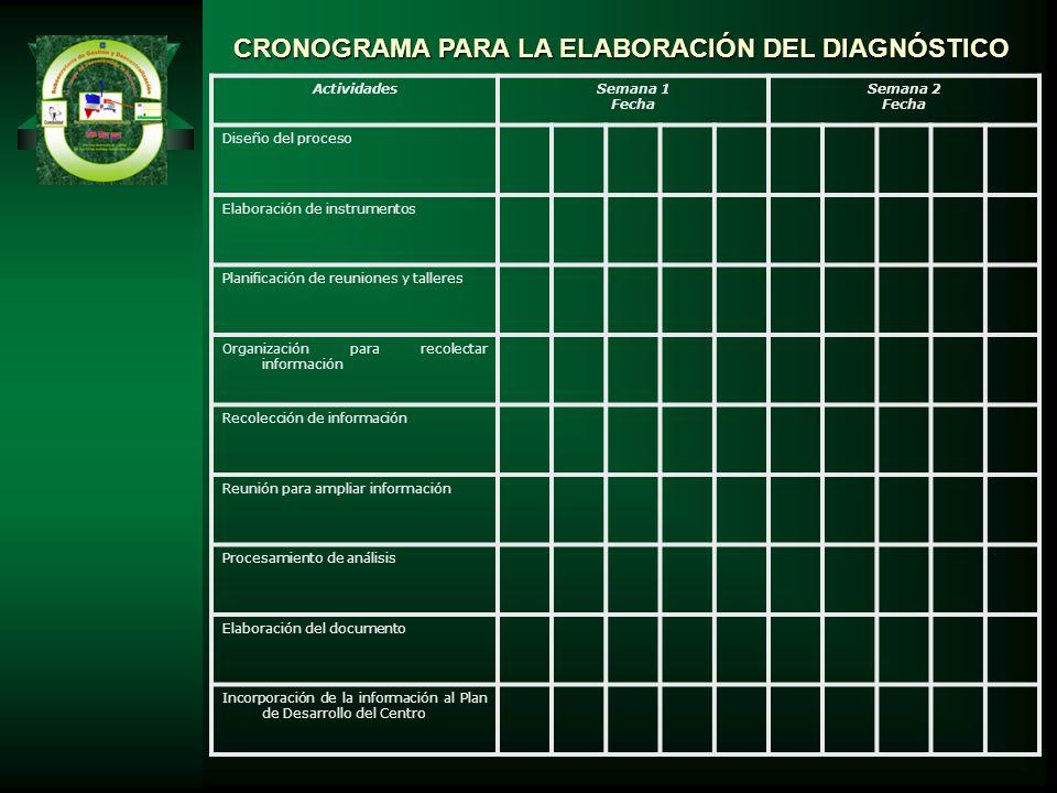 CRONOGRAMA PARA LA ELABORACIÓN DEL DIAGNÓSTICO