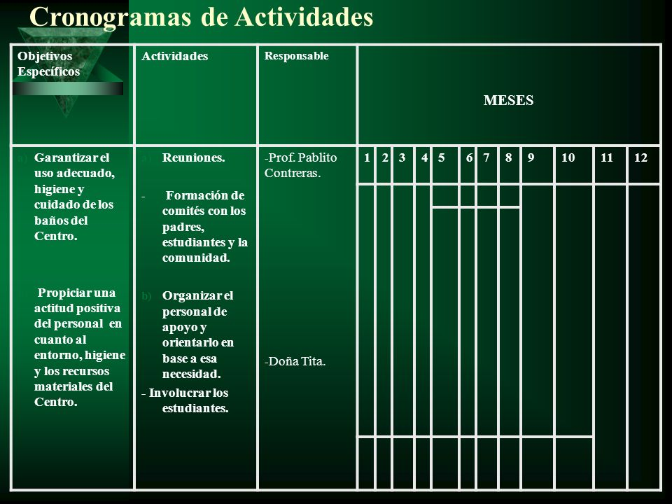 Cronogramas de Actividades