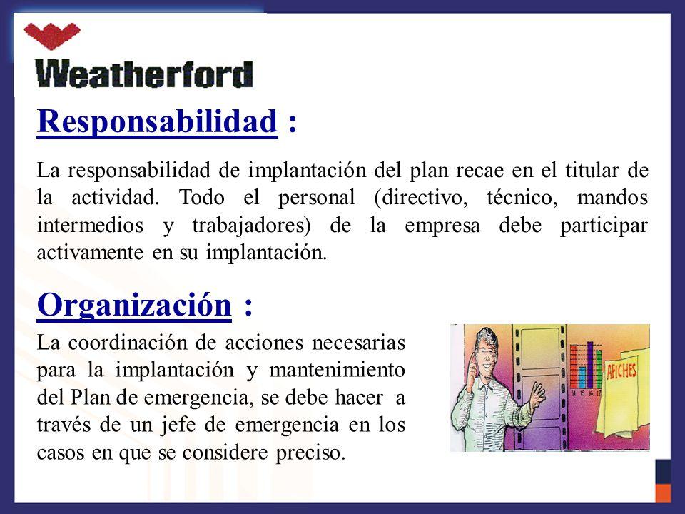 Responsabilidad : Organización :