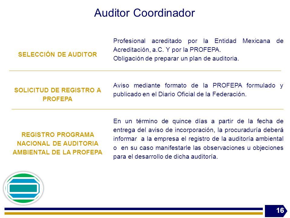 Auditor Coordinador SELECCIÓN DE AUDITOR