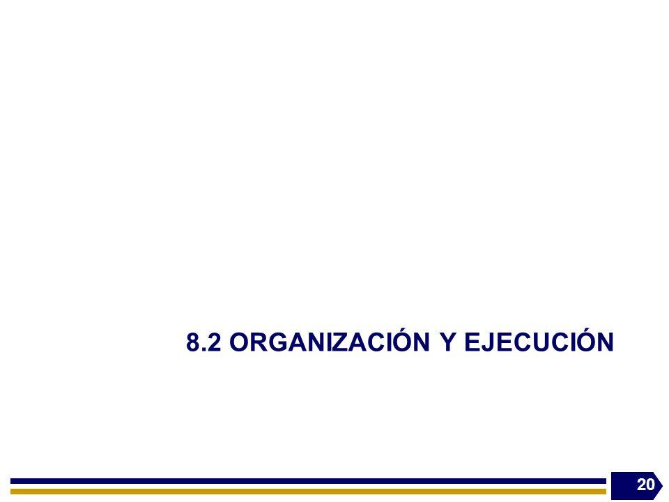 8.2 ORGANIZACIÓN Y EJECUCIÓN