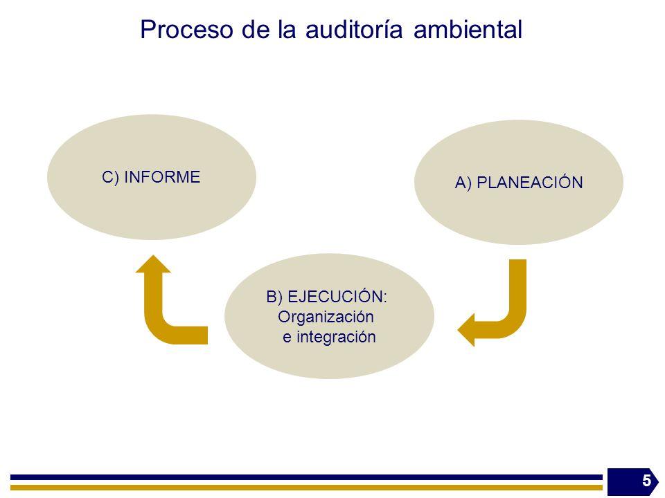 Proceso de la auditoría ambiental
