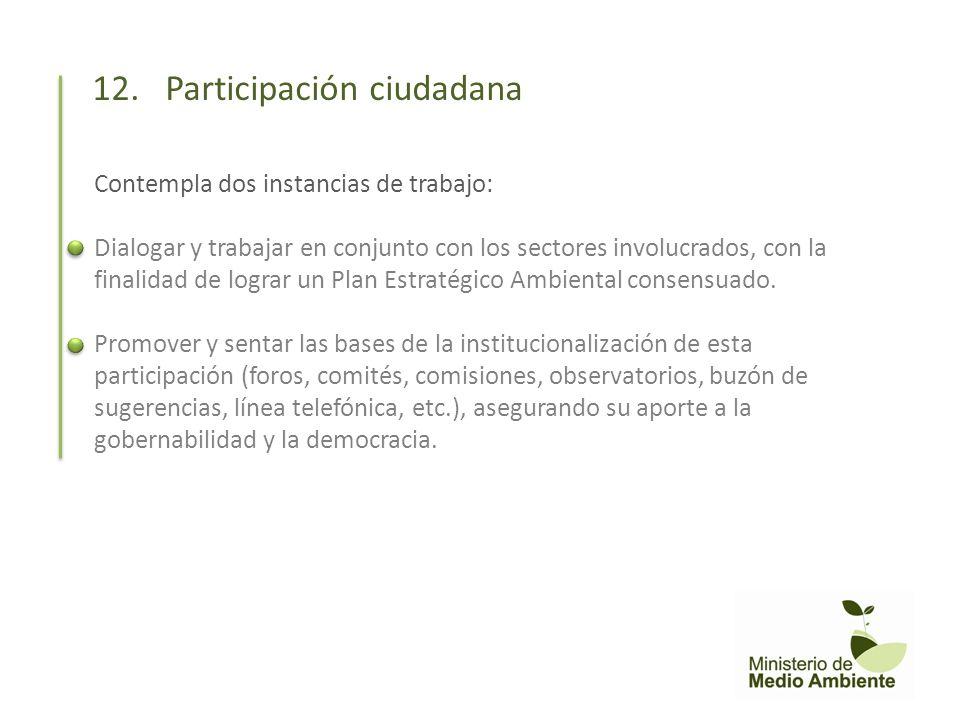 12. Participación ciudadana