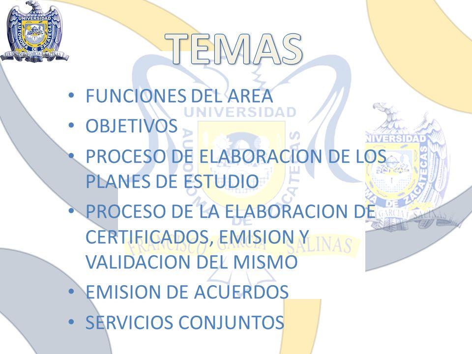 TEMAS FUNCIONES DEL AREA OBJETIVOS