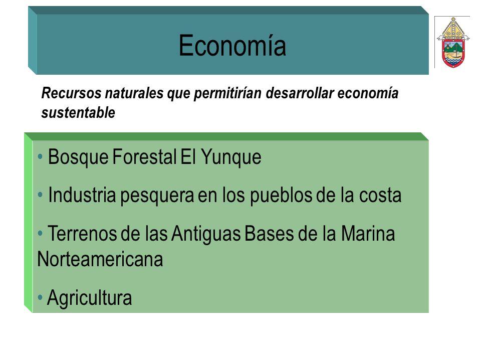Economía Bosque Forestal El Yunque