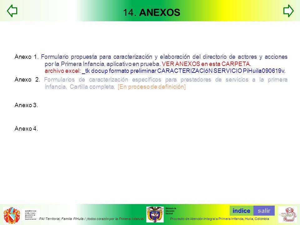 14. ANEXOS