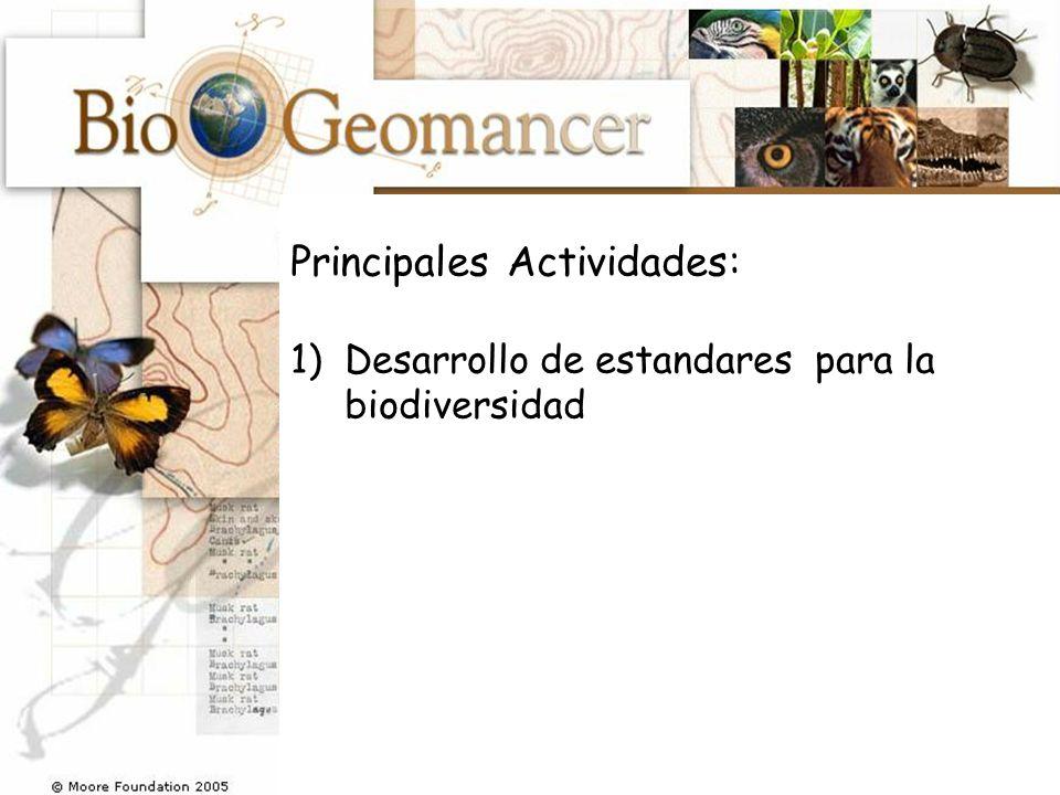 Principales Actividades: