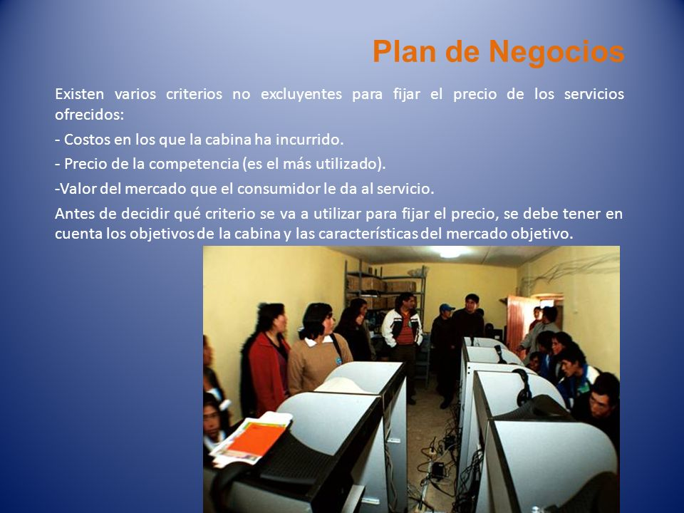 Plan de NegociosExisten varios criterios no excluyentes para fijar el precio de los servicios ofrecidos: