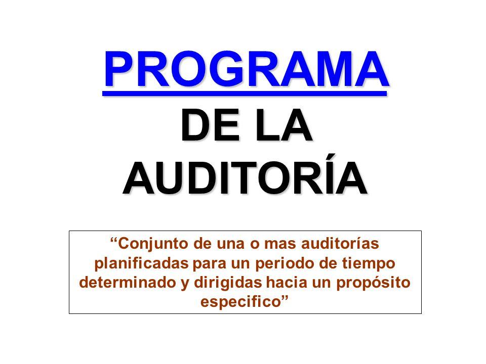 PROGRAMA DE LA AUDITORÍA