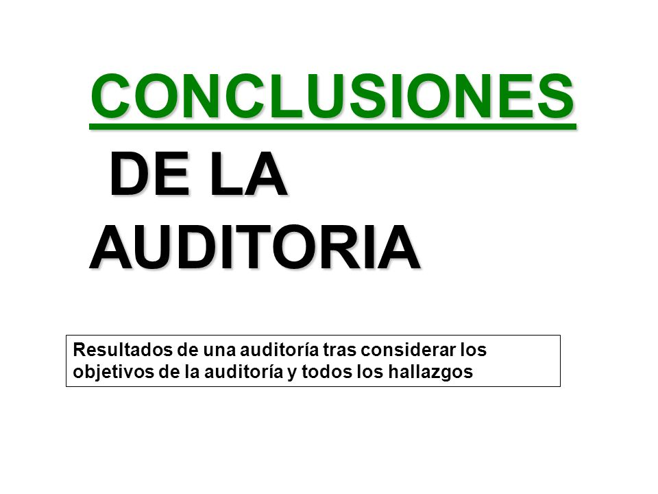 DE LA AUDITORIA CONCLUSIONES